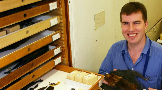 Smithsonian Scientist Discovers Two New Bat Species Hiding in Museum Collections for More Than 150 Years