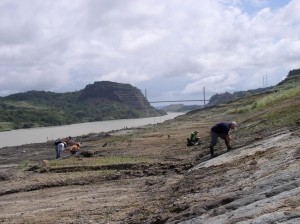 Panama Canal excavations