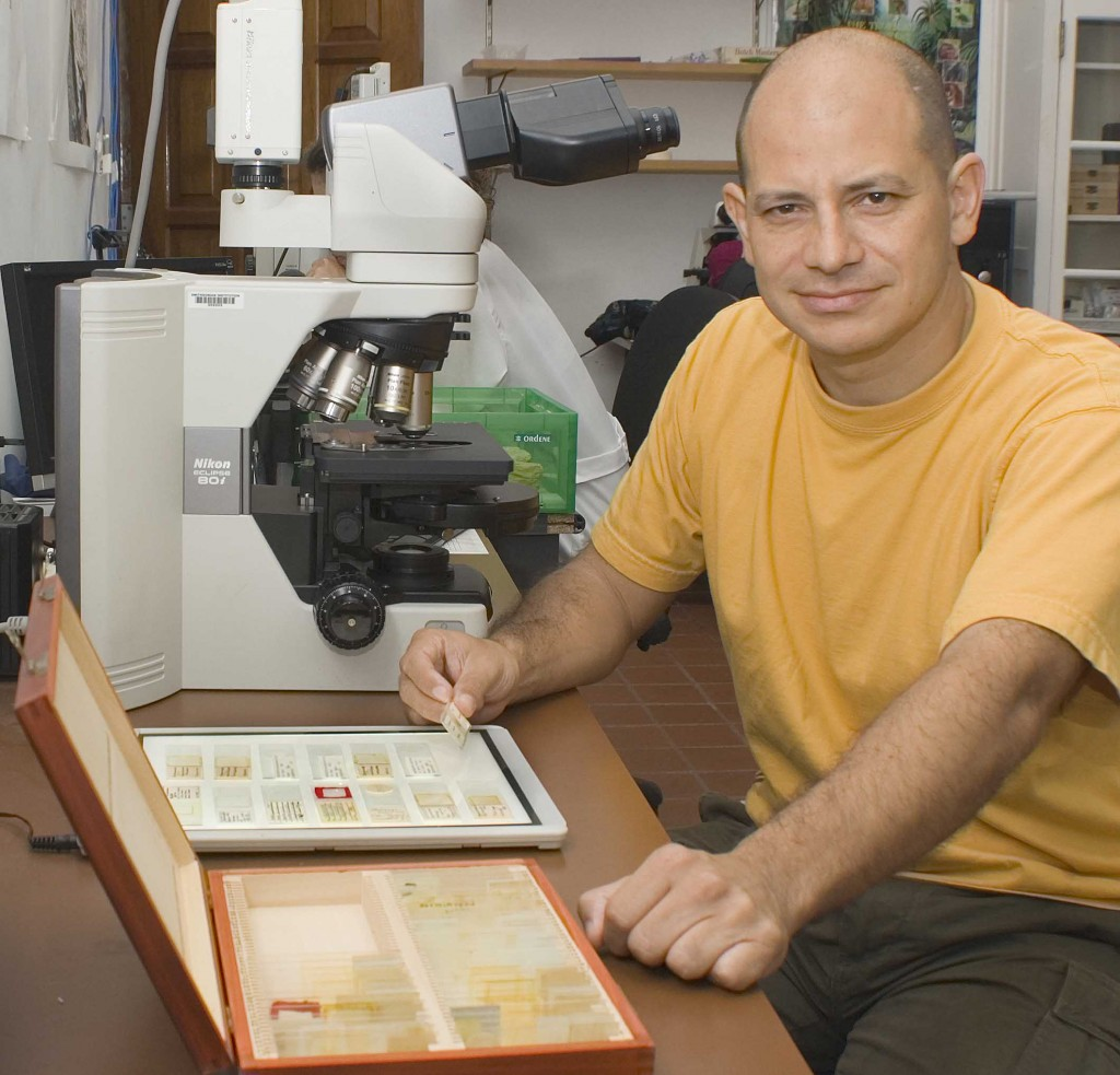 Photo: Carlos Jaramillo uses a microscope to study pollen from the Graham collection. (Photo by Marcos Guerra)