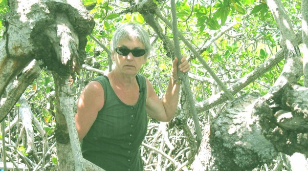 Mangroves research by Candy Feller, Smithsonian Environmental Research Center botanist