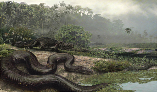 Image right: An artist's conception of the giant prehistoric snake Titanoboa. (Illustration by Jason Bourque)