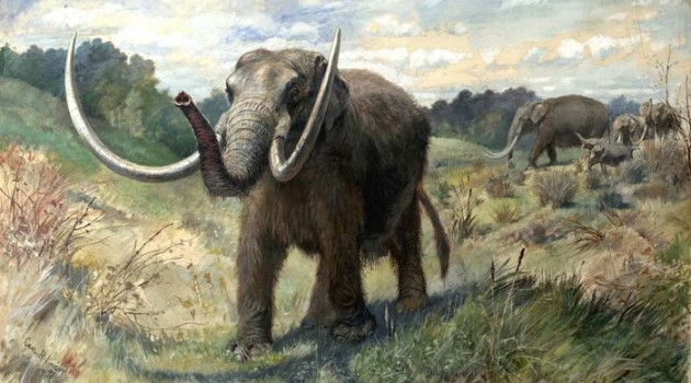 Image right: Mastadon, painting by Charles R. Knight