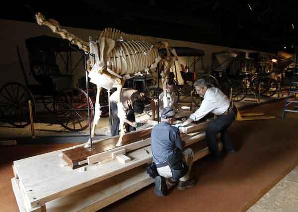 bones of Lexington and workers