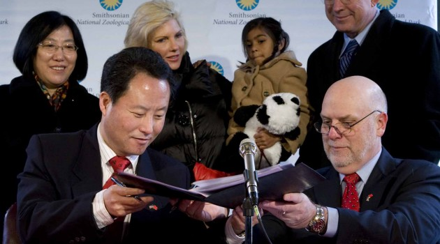Smithsonian signs new giant panda agreement with China