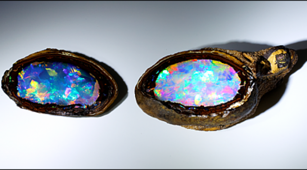 Yowah Nut Opal Enters the National Gem Collection