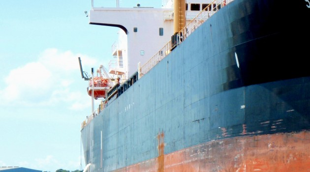 Smithsonian researchers help block ship-borne bioinvaders with new screening strategy