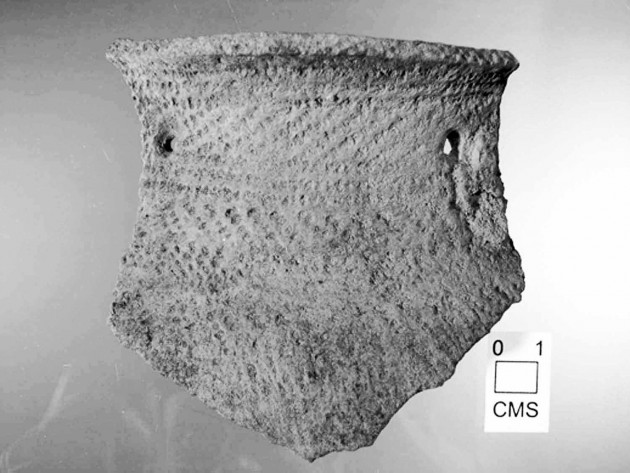 Image left and below: A fragment from a ceramic vessel (left) and a carbonized kernel of corn taken from Native American settlement sites in the Delaware River Valley (Photos courtesy Timothy Messner).