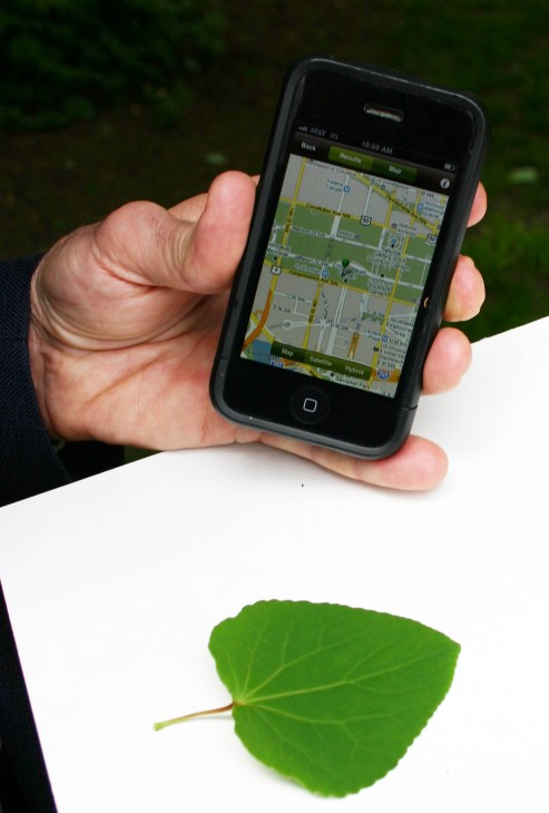 In addition to identifying and providing information about plants, Leafsnap also can map a specific plant's location and save the location for future reference. (Photos by John Barrat)