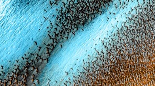 Mars polar dunes