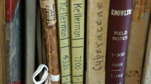 New project will improve access to thousands of scientific field books, journals and notes in Smithsonian collections