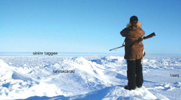 Dictionary captures traditional ice knowledge of the Inupiaq people of Wales, Alaska