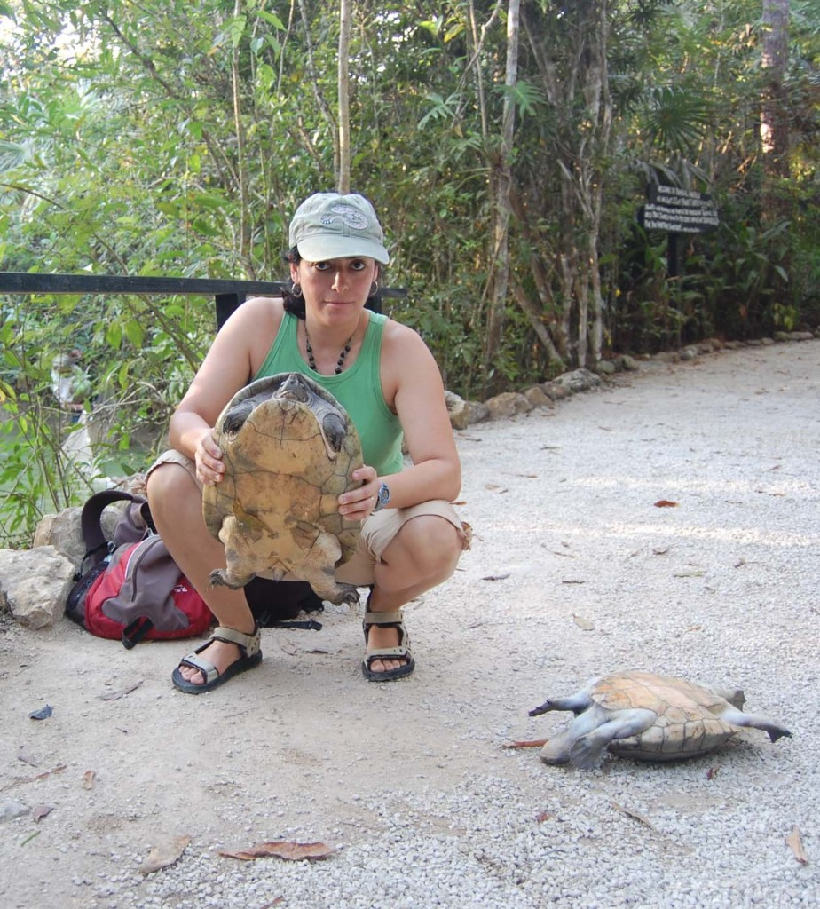 Image left: Gracia González-Porter holds a Central American river turtle at the Belize Zoo.