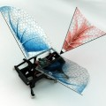 "A six-legged, 25 g robot has been fitted with flapping wings in order to gain an insight into the evolution of early birds and insects. Published, 18 October, in IOP Publishing's journal Bioinspiration & Biomimetics, the study showed that although flapping wings significantly increased the speed of running robots, the origin of wings may lie in animals that dwelled in trees rather than on the ground. ""A wing assisted running robot and implications for avian flight evolution"" (K Peterson, P Birkmeyer, R Dudley and R S Fearing 2011 Bioinspir. Biomim. 6 046008)"