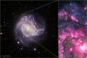 Astronomers witness black hole outburst in Spiral Galaxy M83