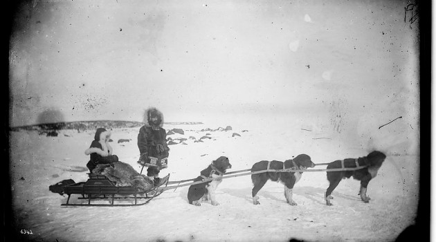 Non-Native? Fur Trader and Woman; Both in Arctic Dress, With Sled and Husky Dog Team 1877. Photo: Edward Nelson
