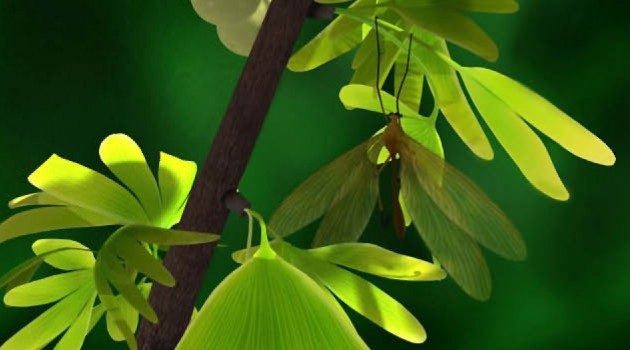 Reconstruction of J. ginkgofolia mimicking the leaves of Y. capituliformis. This relationship was beneficial for both the insect mimic and plant model. (Courtesy Chen Wang, Capital Normal University)