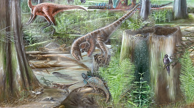 How do paleontologists reconstruct environments from the ancient past?