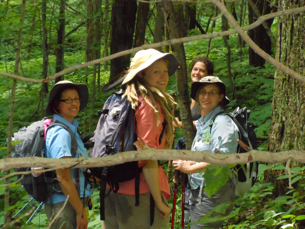 Image above: Ginseng survey team members in a forest in Maryland's Allegany County. (Photo by Christopher Puttock)