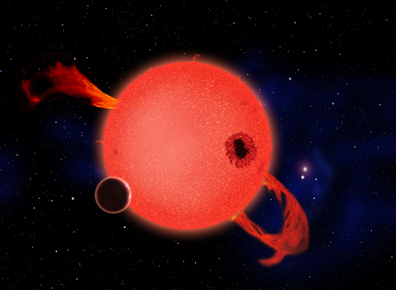 Image above: When it's young, a red dwarf star frequently erupts with strong ultraviolet flares as shown in this artist's conception. Some have argued that life would be impossible on any planet orbiting in the star's habitable zone as a result. However, the planet's atmosphere could protect the surface, and in fact such stresses could help life to evolve. And when the star ages and settles down, its planet would enjoy billions of years of quiet, steady radiance.