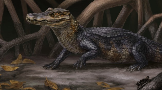 Alligator relatives crossed ancient seaway