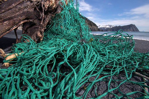 A discarded fishing net
