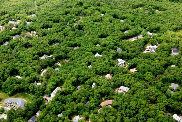 Houses perforating forestland in Massachusetts. (Photo by David Foster)