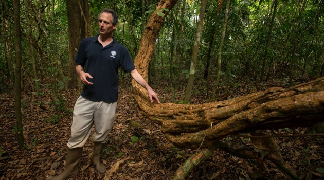 Stefan Schnitzer, a research associate at the Smithsonian Tropical Research Institute, talks about lianas, or woody vines, on Panama's Barro Colorado Island. (Photo by Sean Mattson/STRI)
