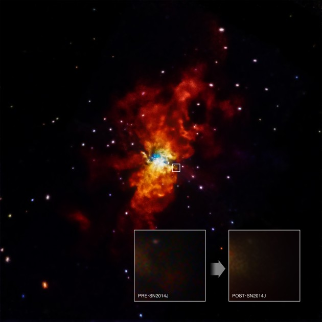Chandra data is being used to help determine what caused SN 2014J to explode. Astronomers first spotted SN 2014J in the M82 galaxy on January 21, 2014, making it one of the closest supernovas discovered in decades. SN 2014J is a Type Ia supernova, an important class of objects used to measure the expansion of the Universe. The non-detection of X-rays from Chandra gives information about the environment around the star before SN 2014J exploded. (Image by NASA/CXC/SAO/R.Margutti et al)