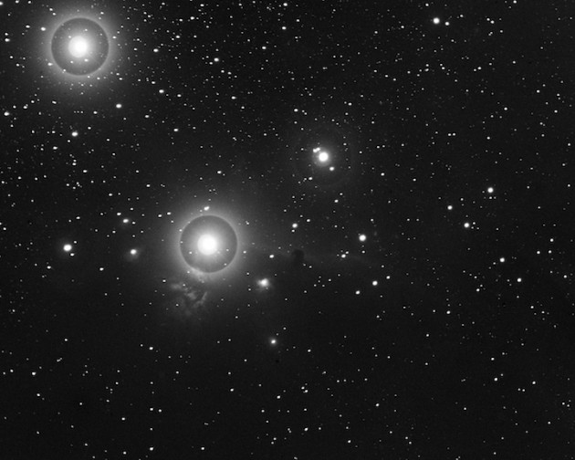 The Horsehead Nebula was discovered on this photographic plate in 1888. It is the dark smudge near the center of the image. The three brightest stars in the field are overexposed, creating the surrounding rings and other image artifacts. (Harvard College Observatory)