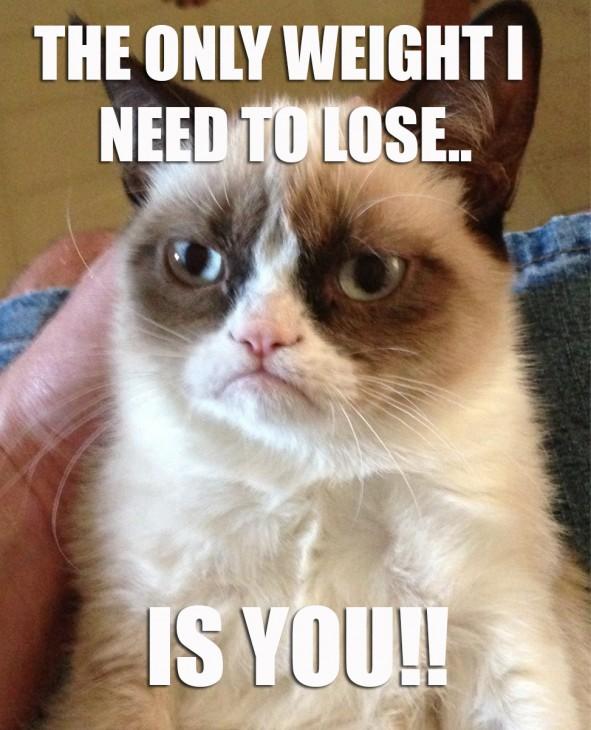 grumpy-cat FINAL