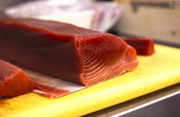 "Eaten raw and thinly sliced, the dark-red belly meat of ""Thunnus orientalis,"" the Pacific bluefin tuna, is highly prized for its rich oily flavor by sashimi and sushi consumers in Japan. A single 400-pound Bluefin sold for $37,500 during the 2015 New Year's opening of Tokyo's Tsukiji fish market. (Flickr photo by InvernoDreaming)"
