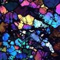Ureilite meteorite polarized