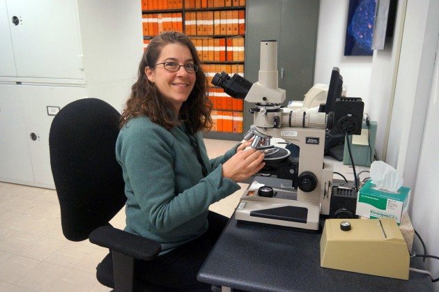 Smithsonian geologist Cari Corrigan uses a petrographic microscope to examine ureilites and look back 4.5 billion years. (Photo by Johnny Gibbons)