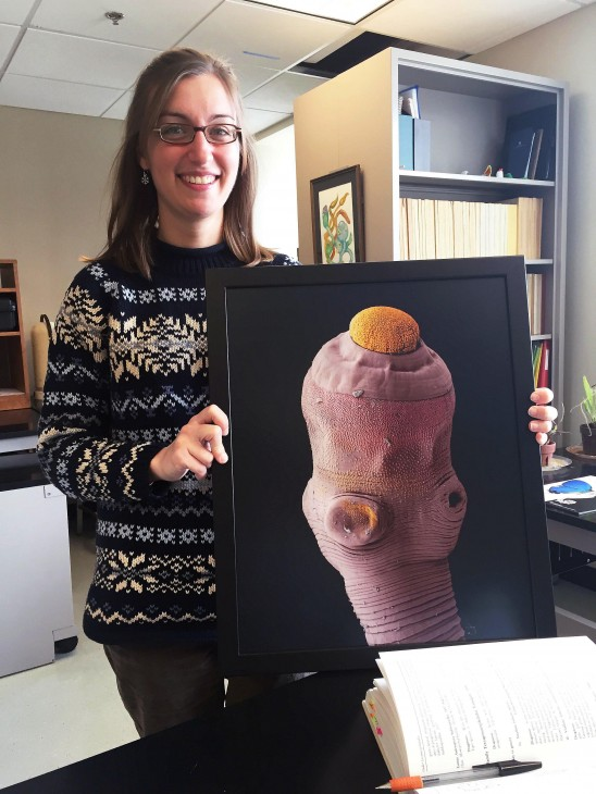 "Anna 8Phillips holds a colorized electron microscope photo of a species of tapeworm from a cow-nosed ray (""Rhinoptera bonasus""). Produced by Kiersten Jensen at the University of Kansas, it is one of a series of pieces intended to show the diversity of scolexes in tapeworms. (Photo: Michelle Z. Donahue)"