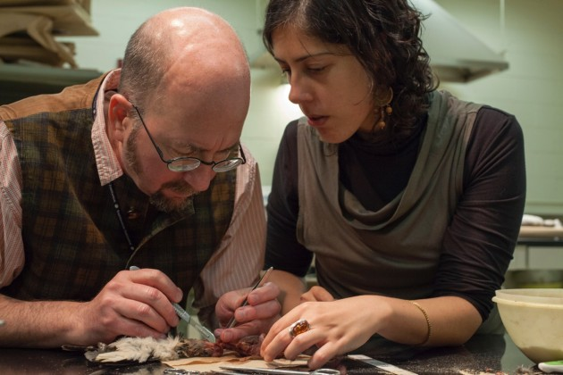 "Robert Costello and Diana Marques dissect a woodpecker at the National Museum of Natural History. They used the specimen to study its tongue mechanism and later recreate the visuals and motion in 3D for the augmented reality experience of ""Skin and Bones."""