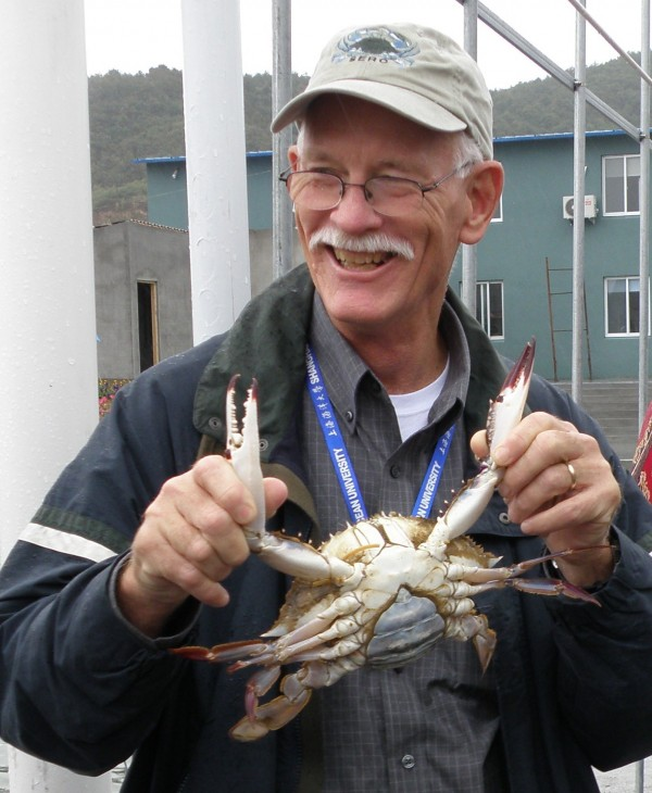 SERC Director Tuck Hines holds a female blue crab. SERC's collaborative research with other scientists was critical to reversing a population decline of the crabs in the Chesapeake Bay. (Credit: SERC)