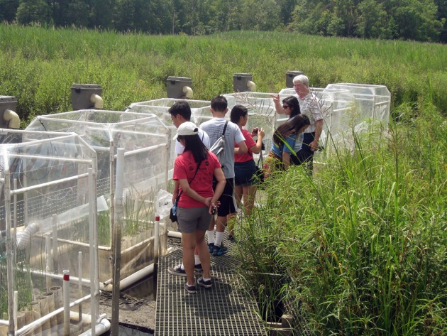 Mark Haddon, Director of Education at SERC, teaches visiting students about the Center's work on climate change in SERC's Global Change Research Wetland. (Photo courtesy Consortium for Ocean Leadership)