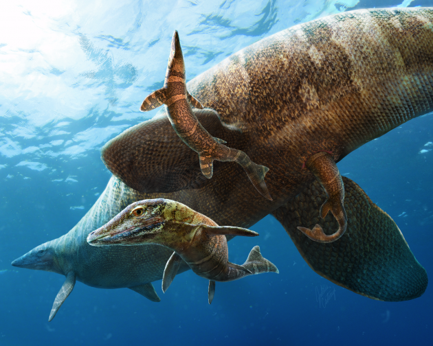 A Clidastes mosasaur gives birth to live young in the open ocean 85 million years ago. (Illustration by Julius Csotonyi)