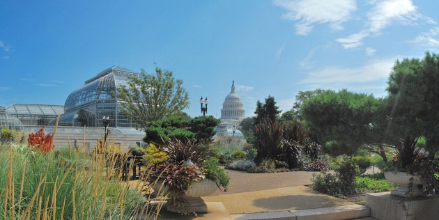 The U.S. Botanic Garden is one of the partner gardens where Smithsonian scientists will capture genomic samples for preservation in a globally networked biorepository. (Photo credit: U.S. Botanic Garden)