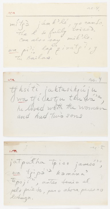 Obispeno grammatical slipfile notes – John Peabody Harrington Papers, Southern California and Basin, Box 382, National Anthropological Archives