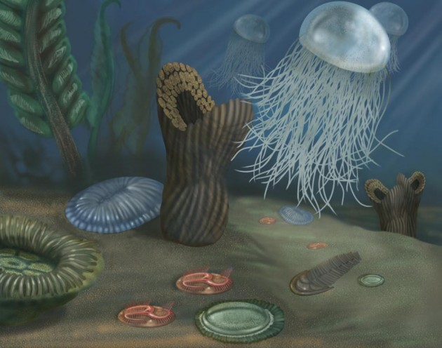 Earth's first multicellular creatures had soft bodies. This illustration one imagining of a community of Ediacaran biota, some of which resemble living ocean creatures. Others are unlike any known organisms and cannot be classified. Scientists have found fossils of these fauna in sedimentary rocks worldwide. (Illustration by Smithsonian Institution)