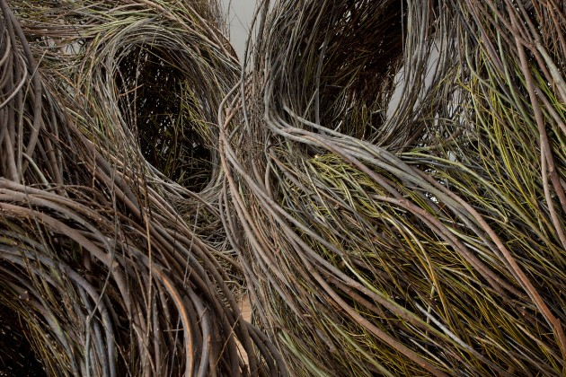 Shindig, Patrick Dougherty, 2015. Willow saplings (Courtesy of Patrick Dougherty)