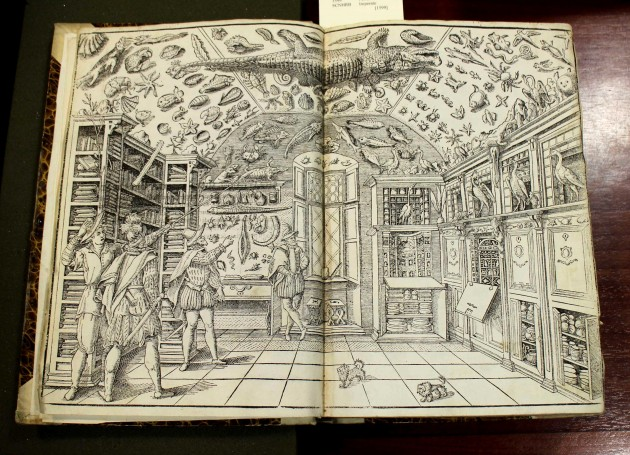 "Collection of Curiosities Ferrante Imperato, ""Dell'historia natural,"" 1599"
