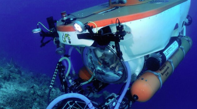 Capturing a new species with a submersible