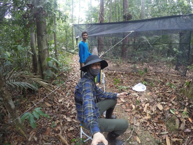 Mauren Turcatel, foreground, and Daniel Dias await for horse-flies to appear in the large malaise trap they have set up in the Amazon jungle