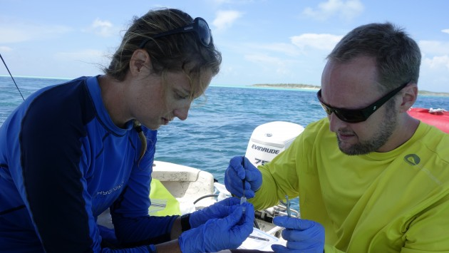 Nathan Truelove and Candice Brittain processing DNA samples