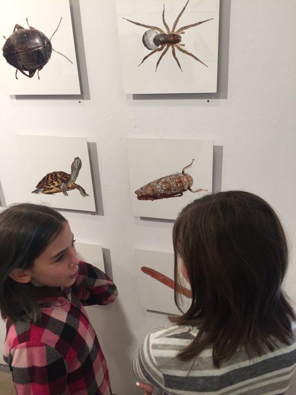 Children discuss photos
