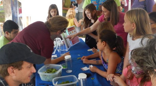 Annual Smithsonian-led science festival draws crowds in Fort Pierce, Florida