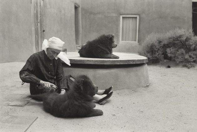 Georgia O'Keeffe and Dogs