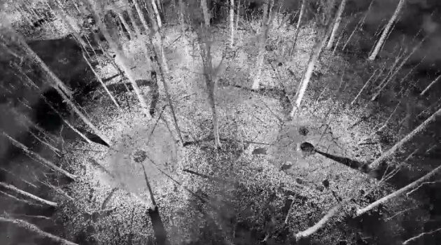 Remote sensing of a Smithsonian forest with airborne LiDAR